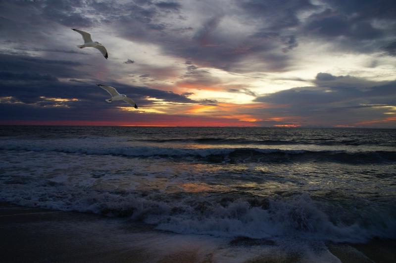 Carolina Sunrise!