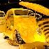 © Sibylle Basel PhotoID # 9833212: Yellow Coupe