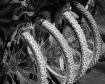 Bike Tires_390
