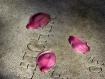 Petals on a Grave