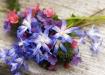 Wildflower Bouque...