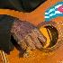 © Annie Katz PhotoID # 9995202: guitar hand