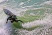 The Joy of Surfin...
