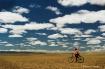 Herding in Mongol...