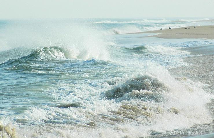 """""""The Wave""""     WE 133 - ID: 10187708 © Beth E. Higgins"""