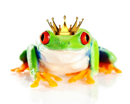 Frog with a Crown or a Prince?