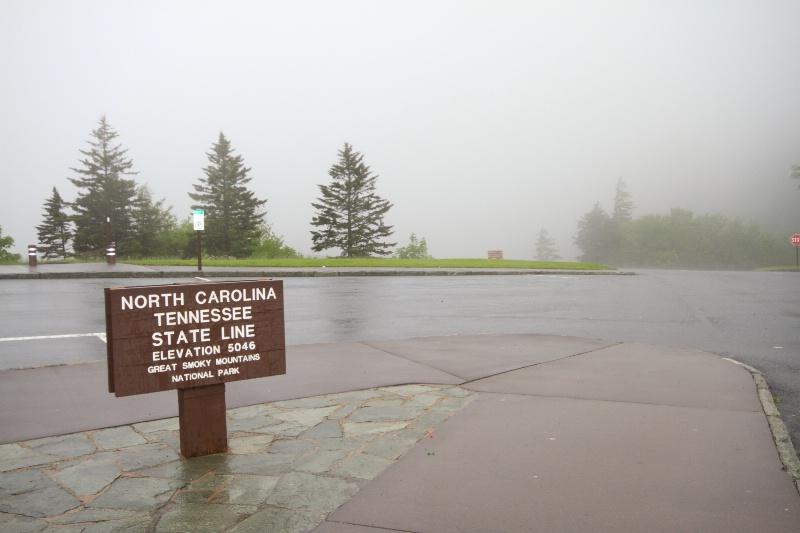 Newfound Gap, TN-NC Border, 5.31.2010 - ID: 10320475 © Michael S. Couch