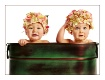 Hydrangea Babies