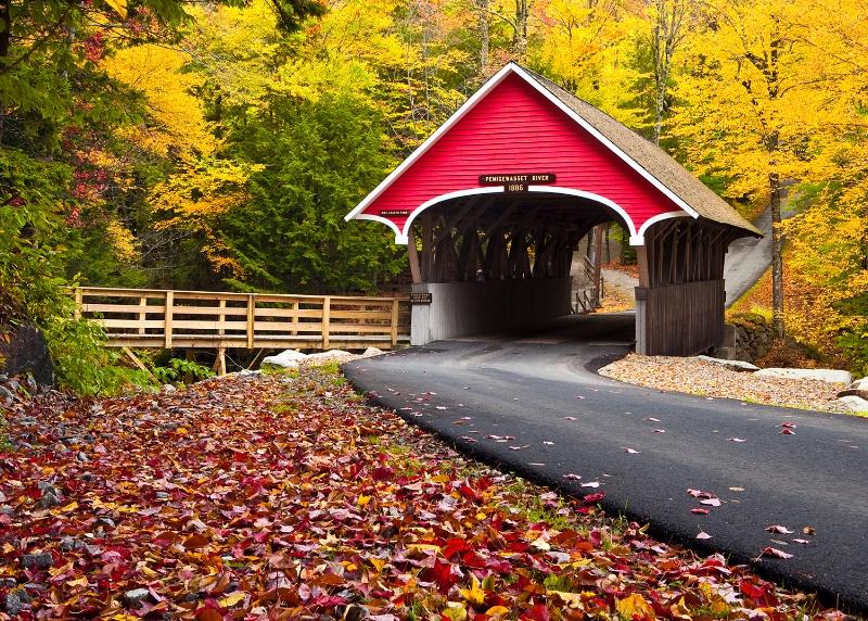 Autumns Travels