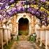 2Wisteria and Arches in Tivoli Gardens, Italy - ID: 10354458 © Lynn Andrews