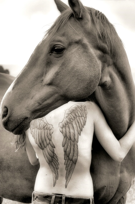 Horses and Angels