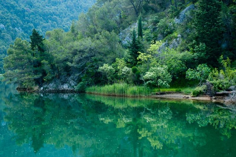 Emerald Riverbank