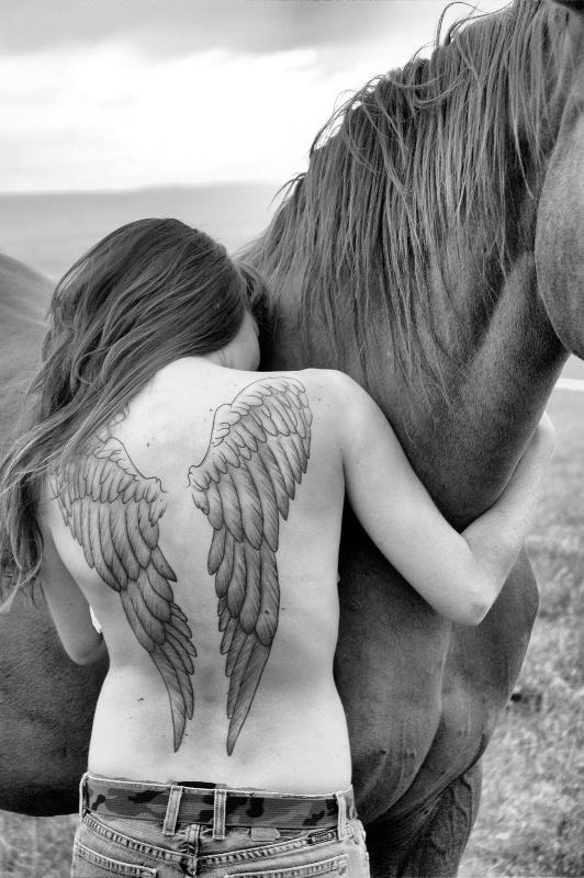 Horses and Tatoos