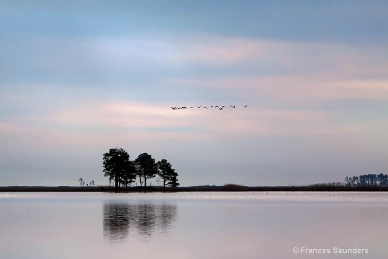 Blackwater Dawn