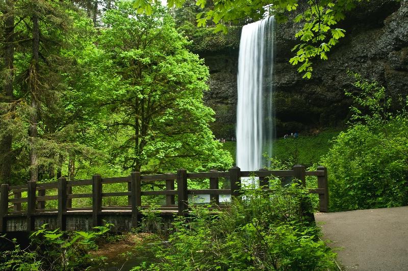 South Falls, Silver Falls SP, OR - ID: 10413944 © Denny E. Barnes