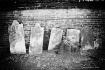 Tombstones of the...