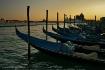 Venice Fairwell