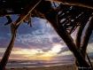 Paradise in Ventu...