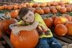 Sweet Pumpkin
