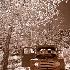 2Zion Relic - ID: 10878783 © Gary W. Potts