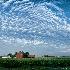 © Karol Grace PhotoID# 10884353: Michigan Farm