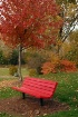 ~Red Bench~