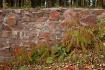 ~Autumn Wall~