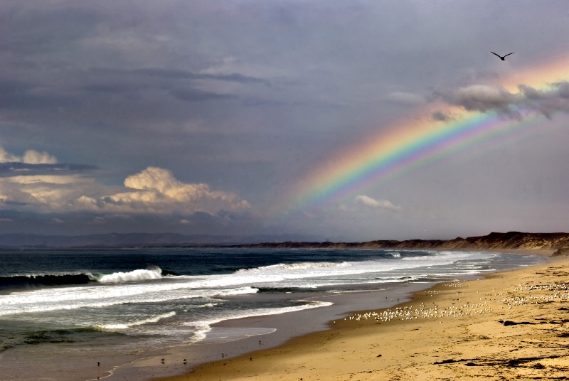 Rainbow over Monterey Bay - ID: 10913783 © Clyde P. Smith
