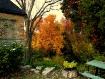 Fall's Palett...