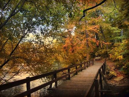 Autumn Awaits