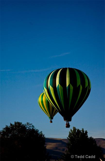 Green and Yellow Dawn - ID: 10944890 © Tedd Cadd