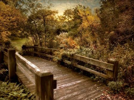 Splendor Bridge