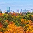 © Natasha Pliss PhotoID # 10975490: Autumn coming to Boston
