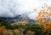 Alpine loop in th...