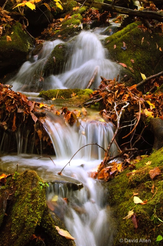 Okemo Mt autumn