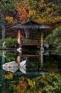 Teahouse Reflecti...