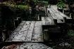 Japanese Bridge C...