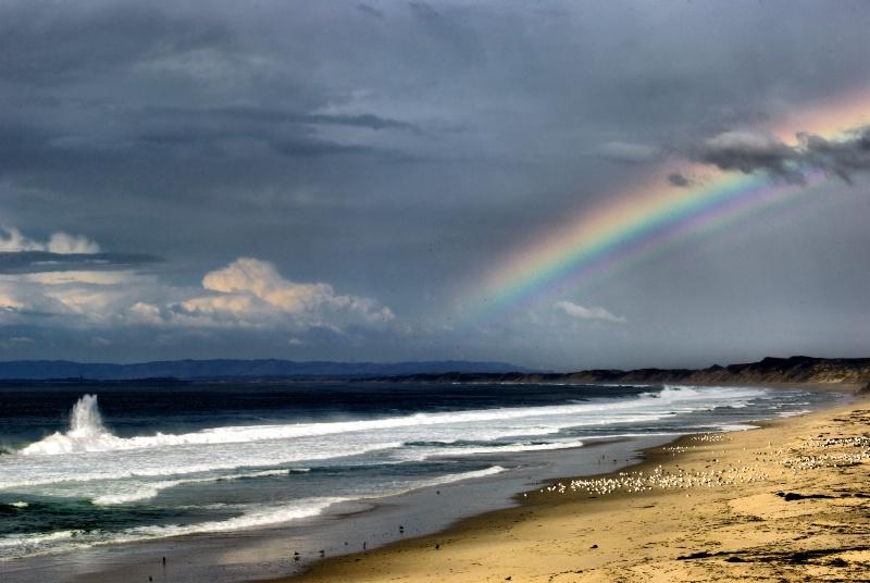 Rainbow at the Beach - ID: 11059543 © Clyde P. Smith