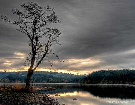 Aberfoyle sunrise