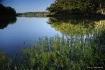 Lake of the Arbuc...