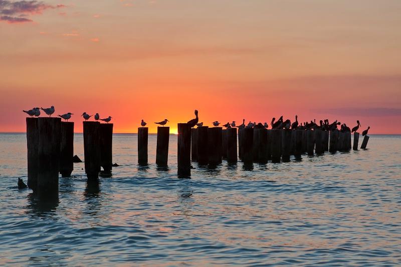Sunset Party - ID: 11088178 © Steve Abbett