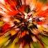 2Zoom Into Fall - ID: 11129013 © Richard M. Waas
