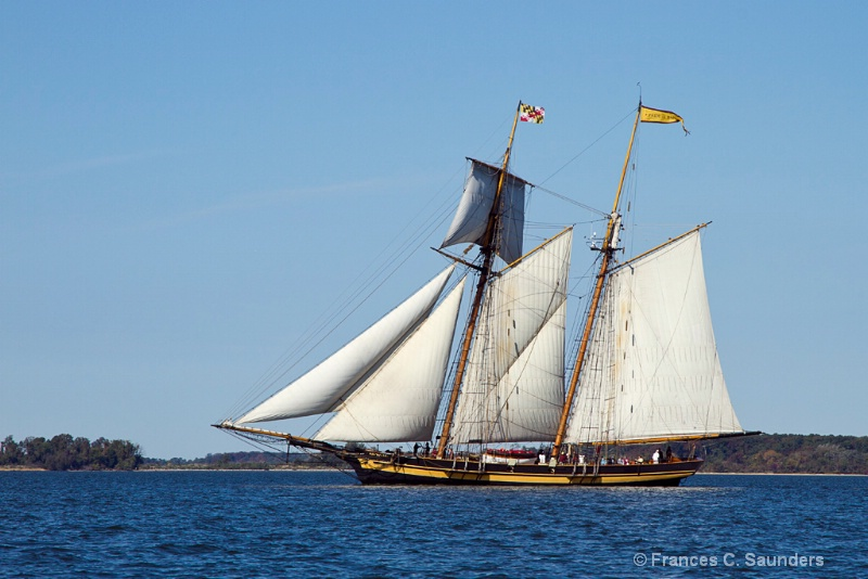 The Pride of Baltimore II (1)