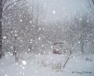 First Snowstorm -...