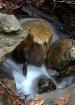 Stream of Conscio...