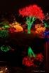 Holiday lights at...