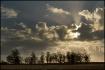 Landscape with su...