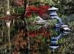 Japanese Reflecti...