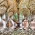 2The Flood at the Spanish Monastery - ID: 11279406 © Richard M. Waas
