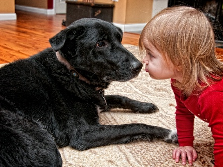 Give the Doggie a Kiss